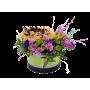 Planta Artificial Yucca Baby