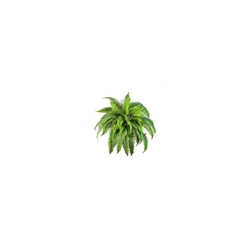Planta Artificial Dracaena Anita