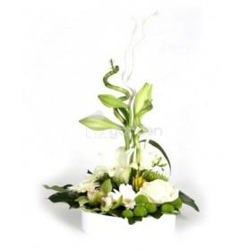 Arranjo de Flores Variadas em Tons de Branco - Nevão de orquídeas