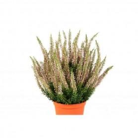 Planta Artificial Erica
