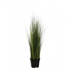 Planta Artificial Variegated Carex Grass