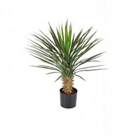 Planta Artificial Yucca Rostrata