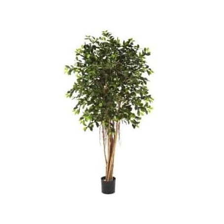 Planta Artificial Ficus Retusa