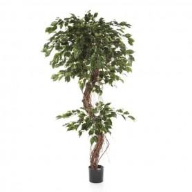 Planta Artificial Ficus Corkscrew Exotica