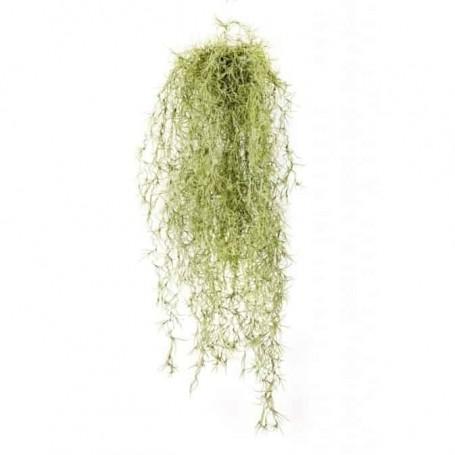 Planta Artificial Tillandsia