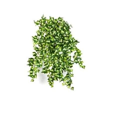 Planta Artificial Mini English Ivy