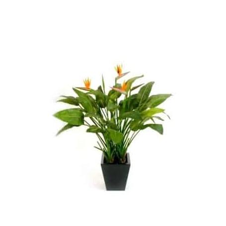 Planta Artificial Estrelicia