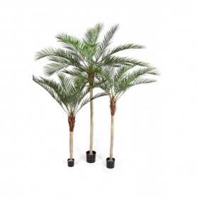 Planta Artificial Palmeira Phoenix