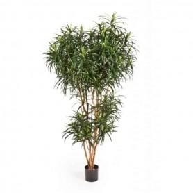 Planta Artificial Dracaena Reflexa Anita