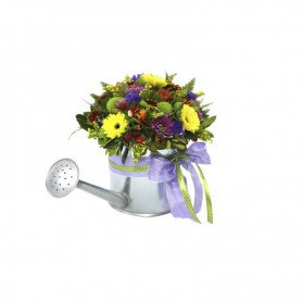 Flores campestres com margaridas e flores da época - REGADOR da AMIZADE