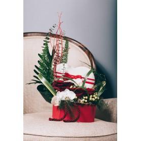 Caixa com Rosas Vermelhas e Orquídeas Brancas - RUBY