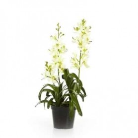 Planta Artificial Orquidea Vanda