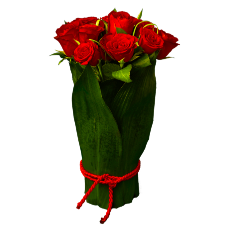 Rosas Vermelhas - SURPRESA