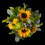 Cesta de Flores Diversas para Oferecer em Várias Ocasiões - PORTO COVO