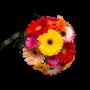Jarra com Ramo Cheio de Flores em Várias Cores - FELICIDADE