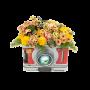 Caixa Especial com Flores Campestres - JARDIM FOTOGRÁFICO