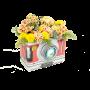 Caixa com Flores Campestres