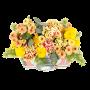 Flores Campestres - JARDIM FOTOGRÁFICO