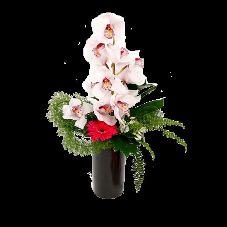 Arranjo de Orquídeas Brancas - DISCRETO