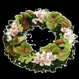 Coroa para Funeral com Orquídeas e Anthuriuns - V