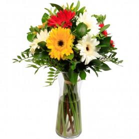 Bouquet de Gerberas - GERBERAS DA ALEGRIA